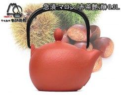 Чугунный чайник для чайной церемонии IWACHU 12627, 0,30 л